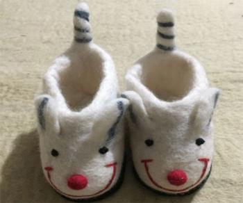 Mouse shoe
